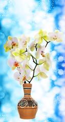 Blooming Orchid in vintage ceramic vase