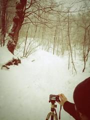 photo en hiver