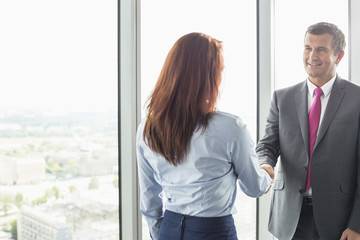 Smiling businessman shaking hands with businesswoman in office