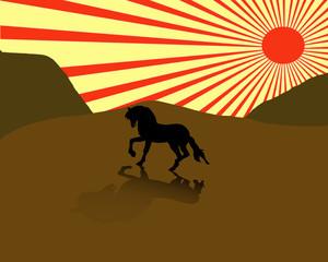Horse illustration.