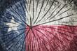 flag of  Texas - 74591046