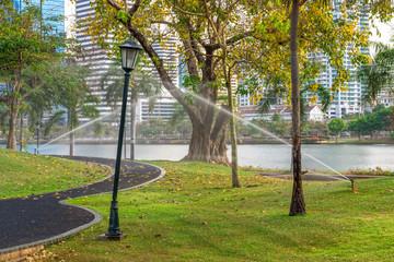 Garden in Bangkok city, Thailand
