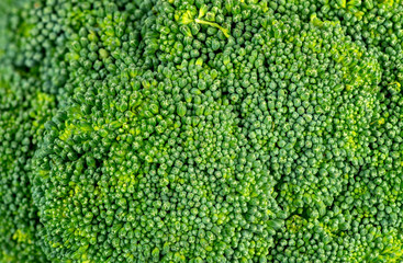 Green background texture of broccoli head
