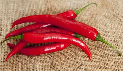 poivron rouge piment paprika