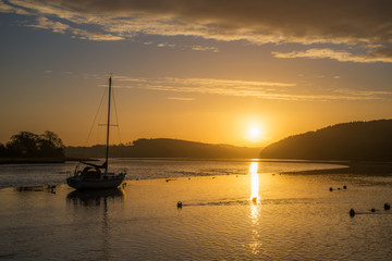 Sunrise on the river lynher with golden reflections
