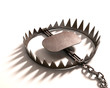 Bear Trap. Clipping path included. - 74593491