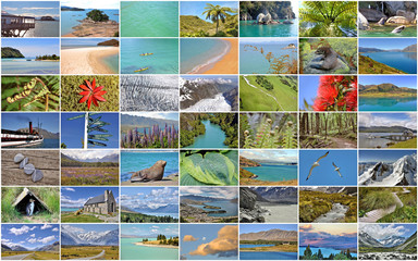 Collection of New Zealand images collage