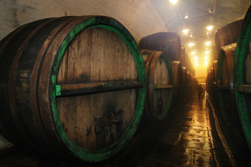 underground cellar with big oak barrel