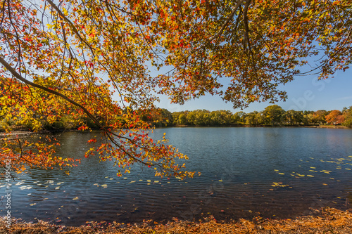 canvas print picture The Fall Season