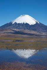 Reflection of Parinacota Volcano in Lake Chungara