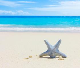 Vacations Sea Surf