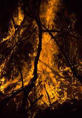close-up big campfire at the night