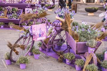 Bicicletta vintage romantica