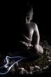 canvas print picture - Buddha