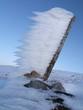 canvas print picture - Winter: Eiszeit - Wandern
