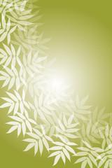 背景素材壁紙,日本風,和風,京都,江戸,葉の模様,枯れ葉,落葉,晩秋,秋,葉,あき,夏,和菓子,菓子,緑,植物,自然,風流,樹木