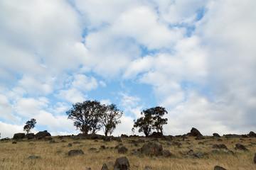 Clouds Over Dry Farmland