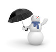 Snowman is waiting for the weather change