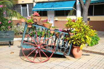Wagon and Plants