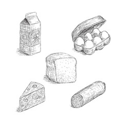 Collection of food illustrations in sketch style