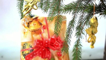 Christmas decoration with gold little angels on branch of spruce
