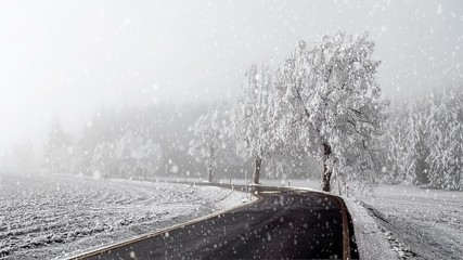 rural winter road going in to the fog with snow, christmas