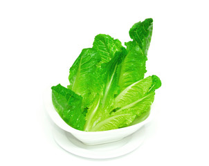 Cos lettuce shoots arranged on a white cup