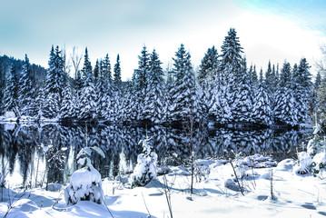 winter scene abroad a lake