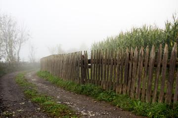 Garden Fence in the Mist