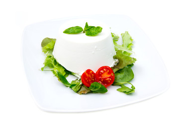 Cottage cheese on plate on white background