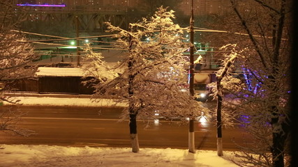 Зимняя дорога в городе на фоне дерева со снегом