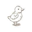Vector Illustration of a Baby Chicken