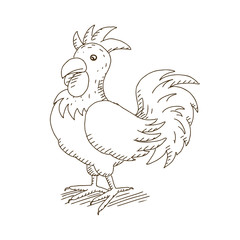 Vector Illustration of a Hand Drawn Rooster