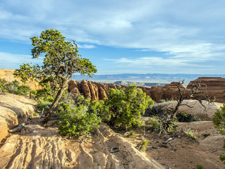 scenic landscape at arches national park