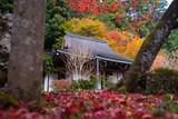 日本庭園 京都 大原 寂光院