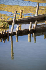 abstract shot of a partial submerged bridge