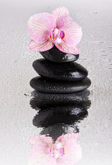 Spa stone pyramid and orchid flower