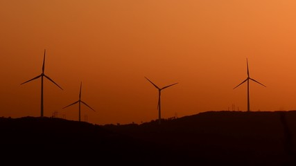 wind turbines in the country side at evening
