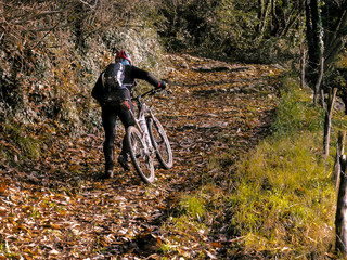 mountain bike on steep trail in autumn forest