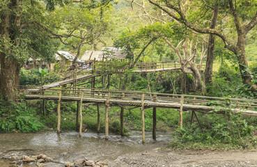 bamboos bridge