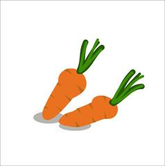 Carrot sketch cartoon hand drawn vector illustration