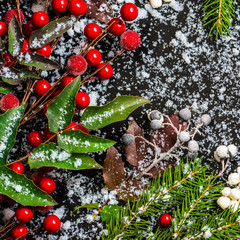 winter card of evergreen branches, red leaves and berry with sno