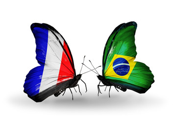 Two butterflies with flags France and Brazil