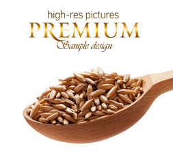 Oats in a wooden spoon  isolated on white background