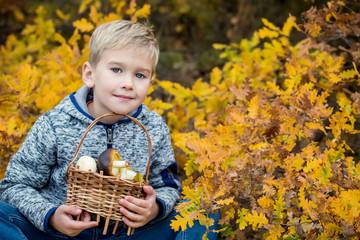 Autumn Portrait Toddler boy in leaves