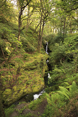 Waterfall in Wicklow Mountains National Park.