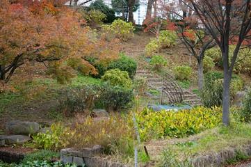 冬の大阪城公園