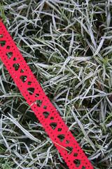 sfondo di Natale_ gelo e nastro rosso