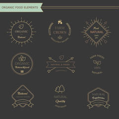 Set of vintage style elements for labels and badges  meat, fresh
