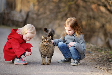 Two little sisters met a cat